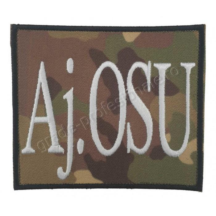 Emblema pentru Ajutor Ofiter de serviciu pe unitate