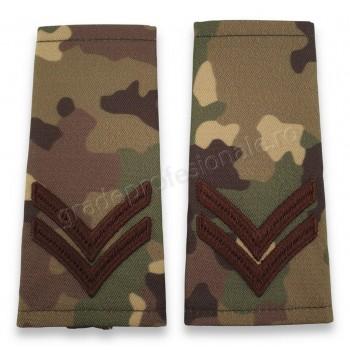 Grade Caporal clasa 3-a combat forte terestre