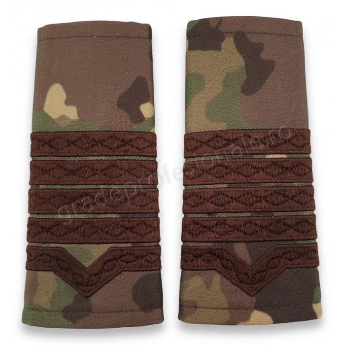 Grade Maistru Militar clasa 1-a combat forte terestre
