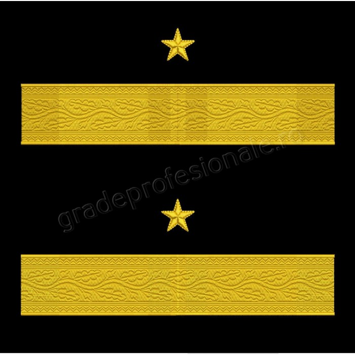 Grade maneca pentru General de Brigada MAPN