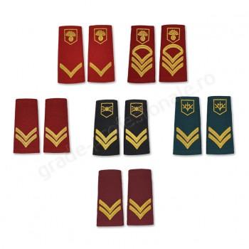 Grade militare de oras soldati profesionisti- MAPN
