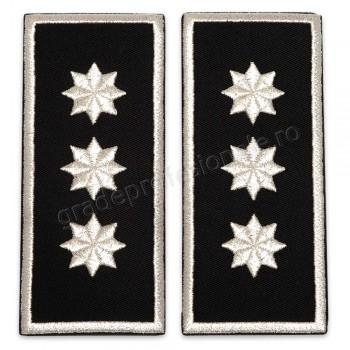 Grade Sef Politia Locala (director executiv) v3