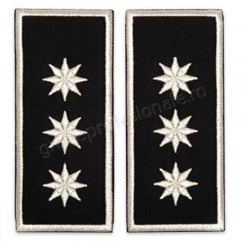 Grade Sef Politia Locala (director executiv)