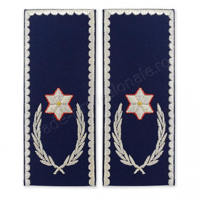 Grade Chestor Politia Romana