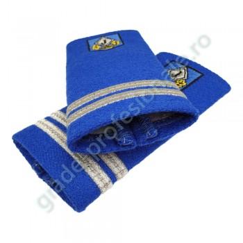 Grade locotenent jandarmi
